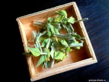 Горный чай τσαϊ του βουνού