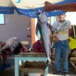 Рынок морепродуктов в Ираклионе