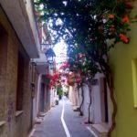 Цветущая улочка