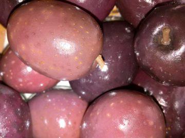 Греческие оливки, фото
