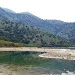 Уточка на озере Курнас