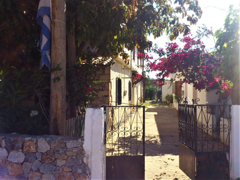 Критская деревушка Пиги
